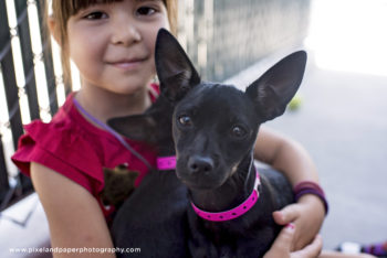 2017-0819_Clear the Shelters_Bonita (19)