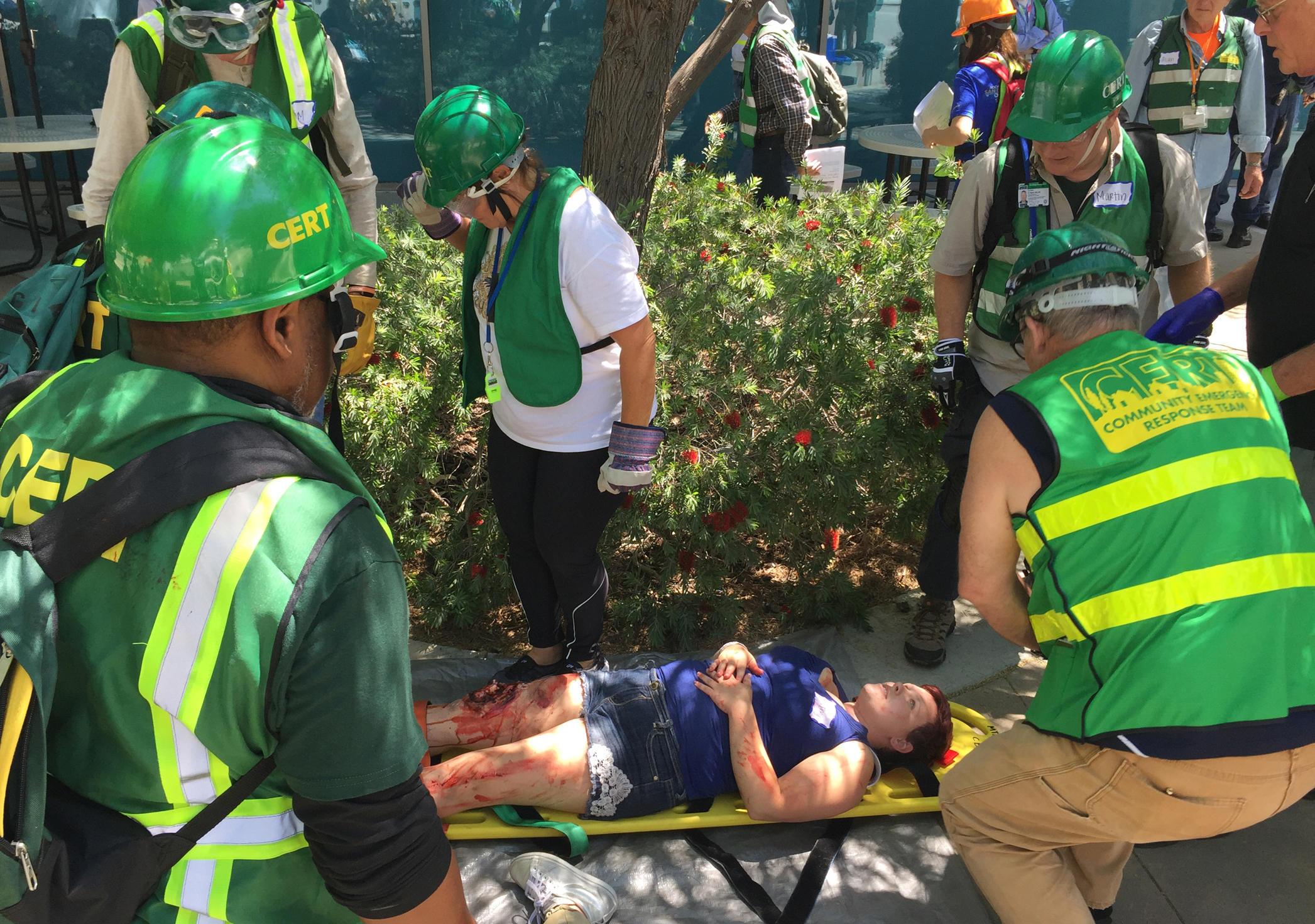 CERT members perform basic first aid on mock victims carried out to a triage center during a regional emergency response drill.