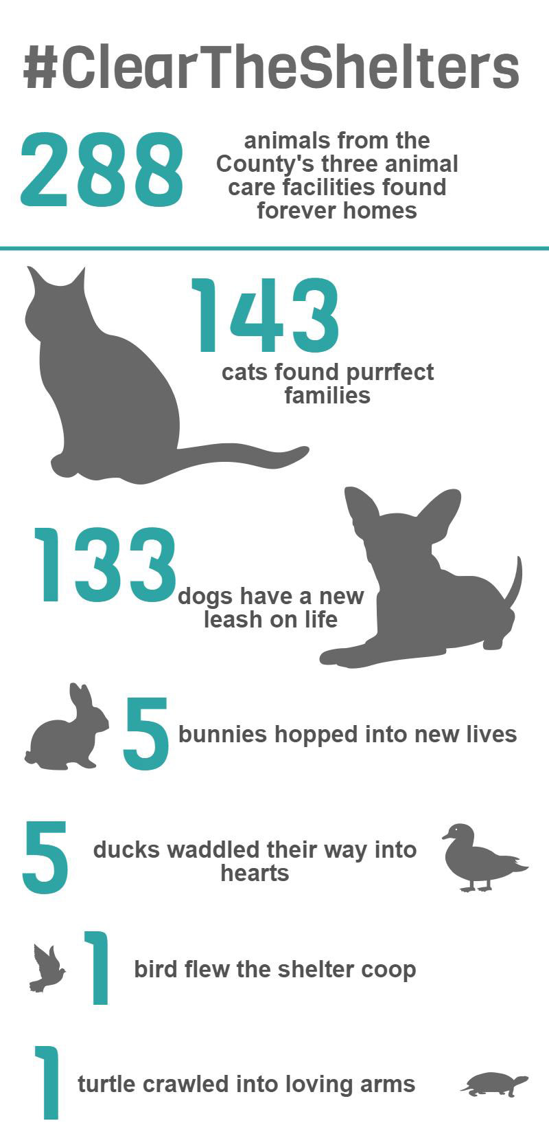 Clear the Shelters_Infographic1