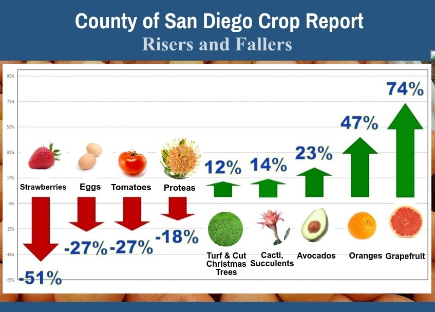 Crop Report Risers Fallers Final
