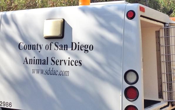 DAS-Animal-Services-Truck