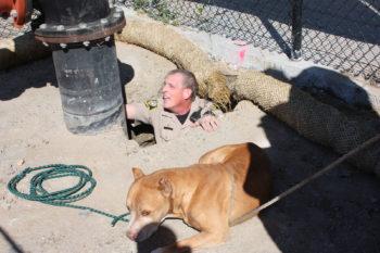 Dog_Hole2_020117