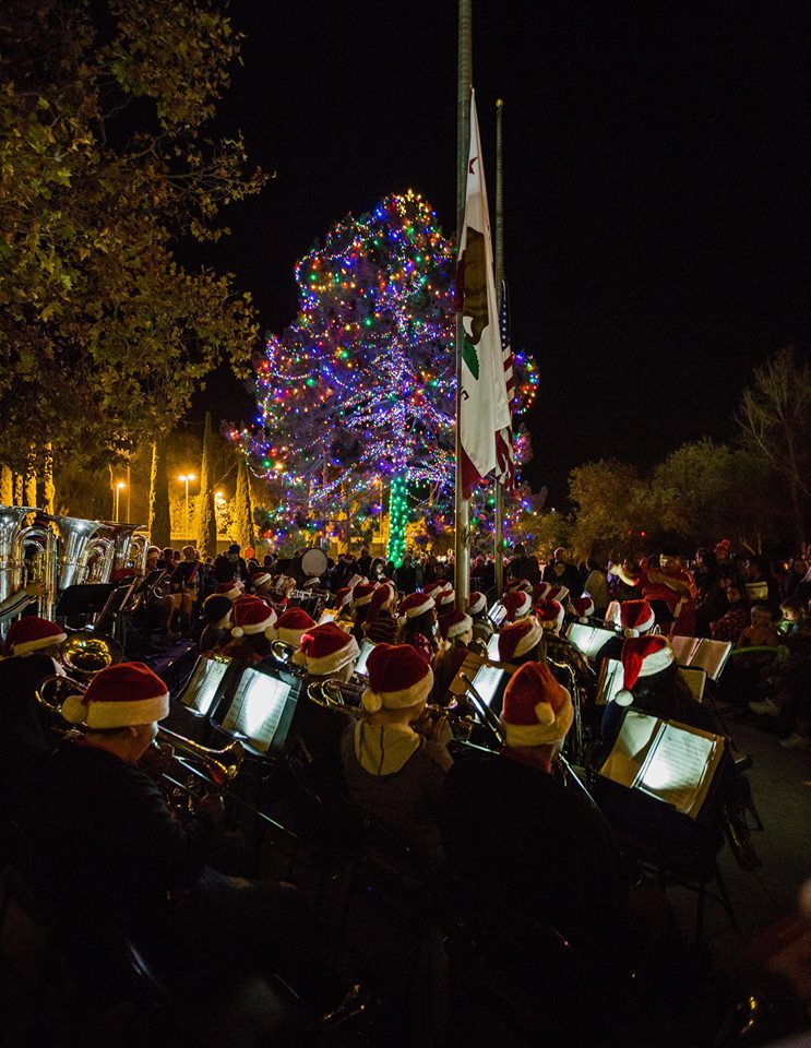 The Official Fallbrook Tree Lighting