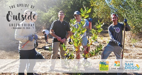 Green Friday: Revitalize the Landscape in Tecolote Canyon