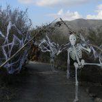 Hellhole_Haunted_Trail8