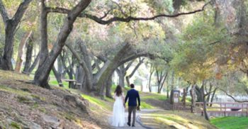 LiveOak_Wedding