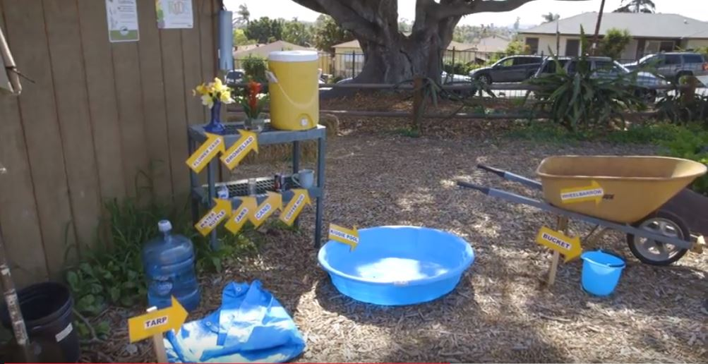 "Have you mosquito-proofed your backyard by dumping out standing water? You should. The ""Aussie Mozzie"" has arrived in San Diego County."