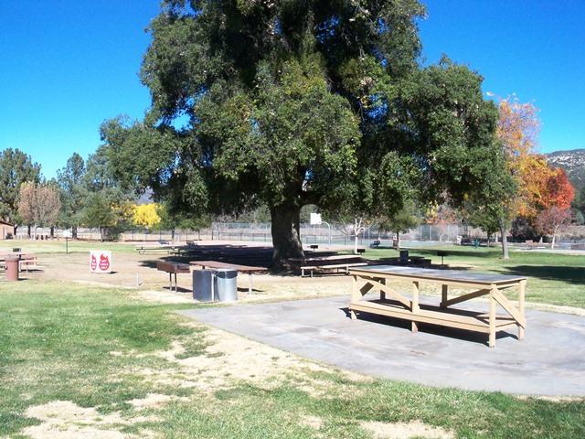 Pine Valley Days | News | San Diego County News Center