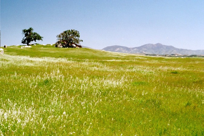 Grasslands Trek