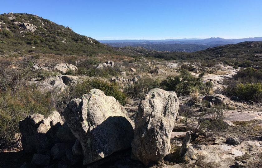 Star Ranch landscape