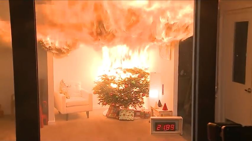 An unwatered tree burns as quickly as newspaper, according the National Fire Protection Association.