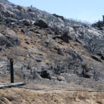 The Border Fire burned utility poles to the ground.