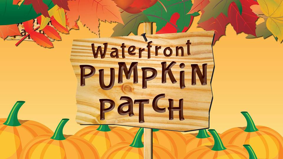 Waterfront Park Pumpkin Patch