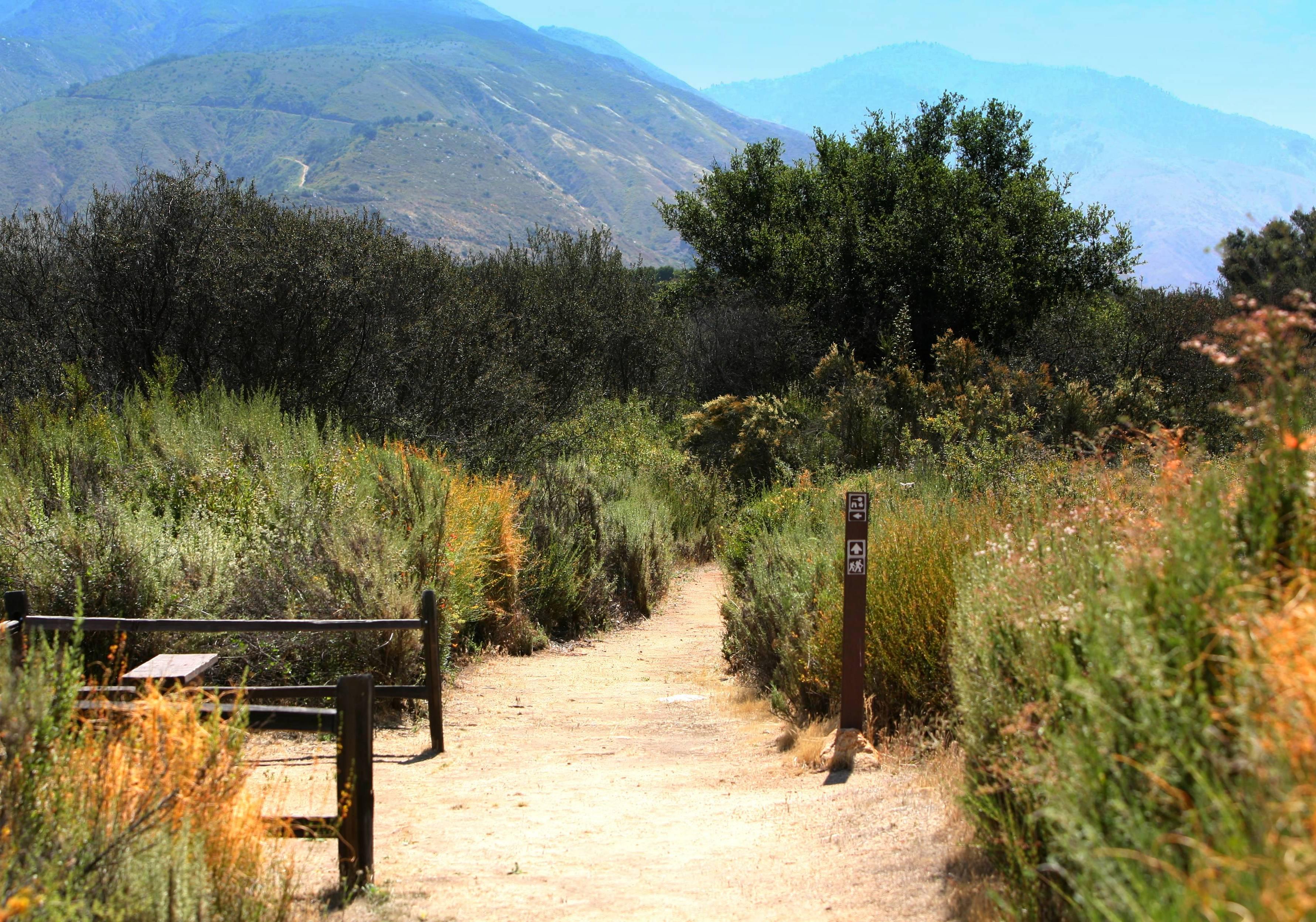 Wilderness Gardens Trail Trek