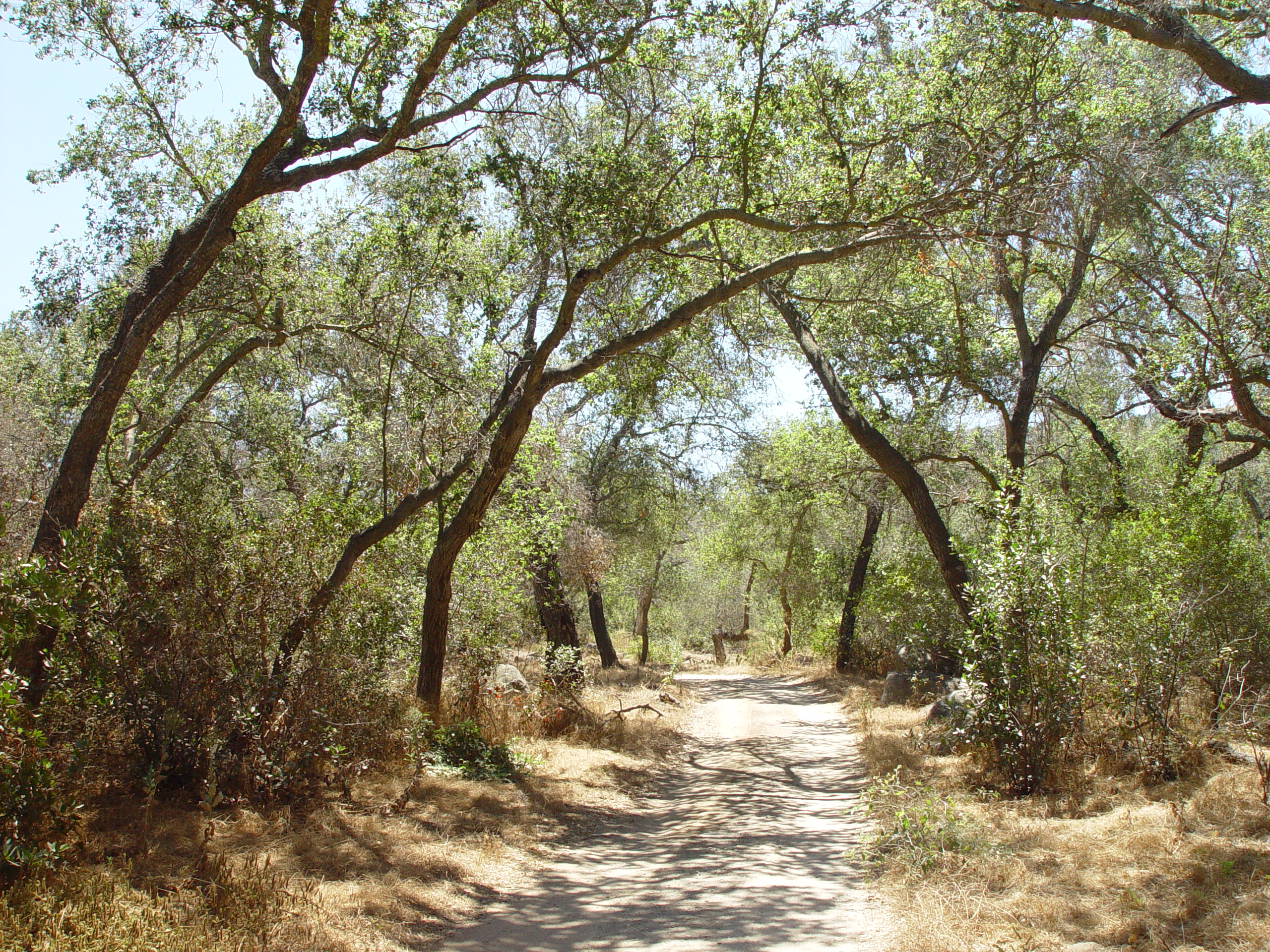 Wilderness Garden Preserves Saturday Hike