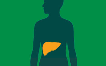 About 20 percent of people with chronic hepatitis C go on to develop cirrhosis and, in some cases, cancer of the liver.