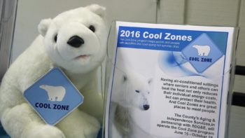Beat the Heat at a Cool Zone