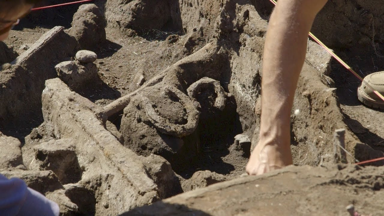 College Students Dig Up Past at County Park