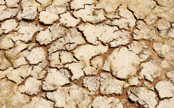 dry_cracked_earth