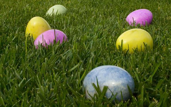 San Dieguito County Park Spring Eggstravaganza