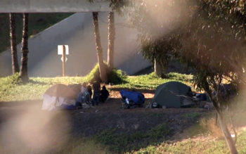 people experiencing homelessness in tents at a park
