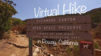 Martha's Grove Virtual Hike