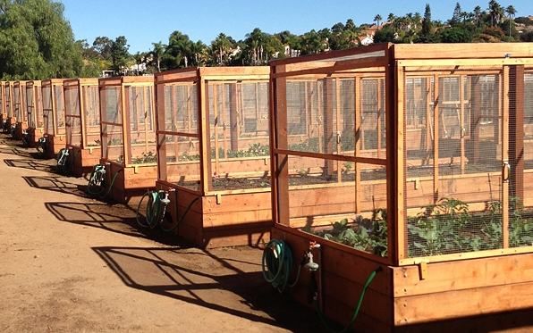 Dig, Sow And Grow At New Community Garden