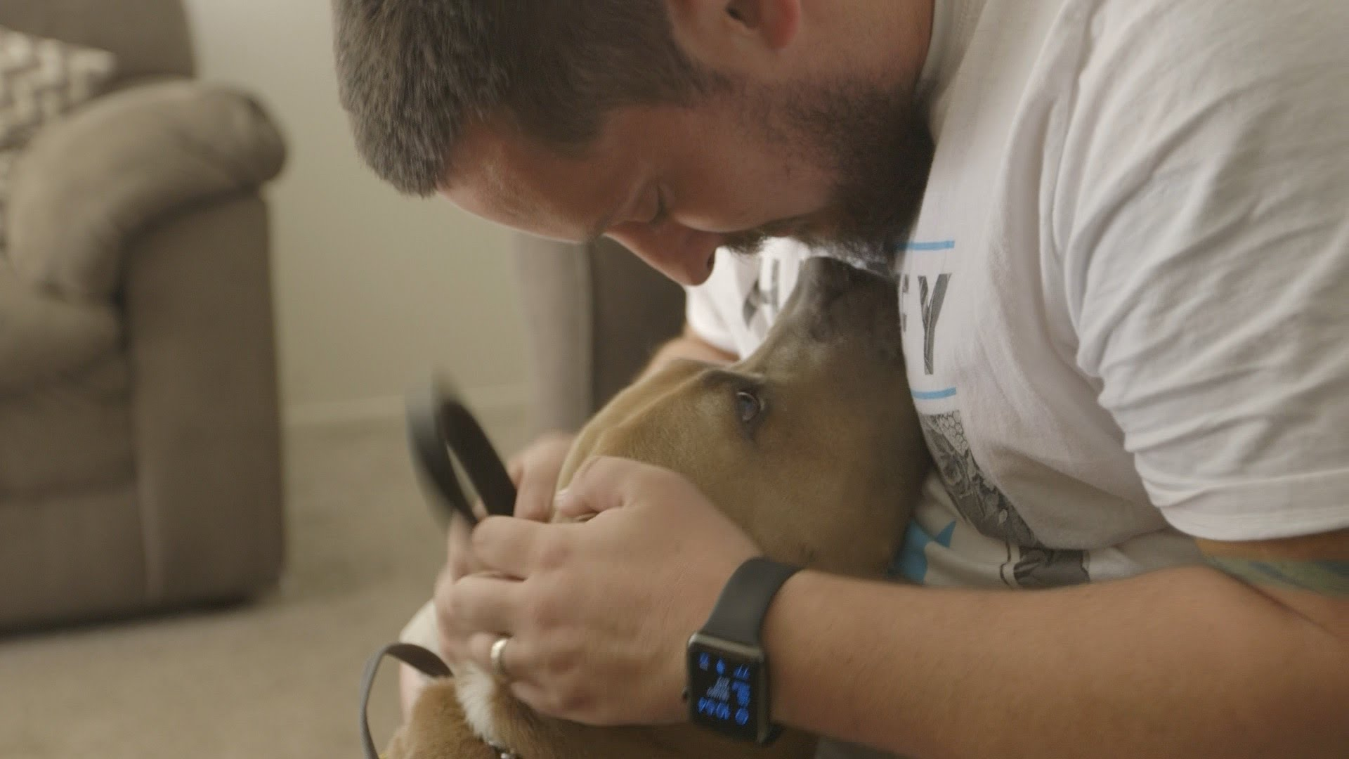 Pet Adoption Fees Waived for Military, Vets