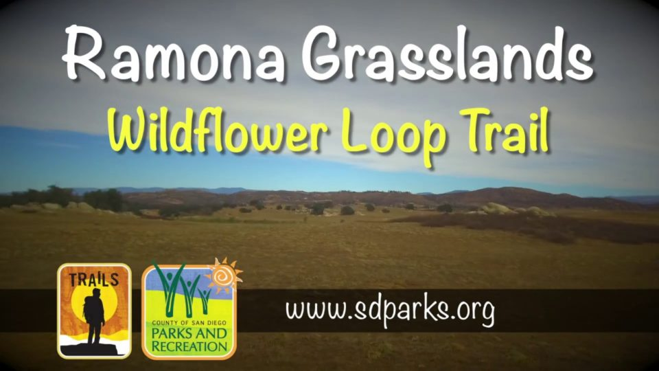 Ramona Grasslands Virtual Hike