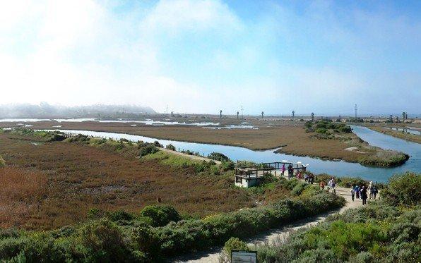 san-elijo-lagoon-trail