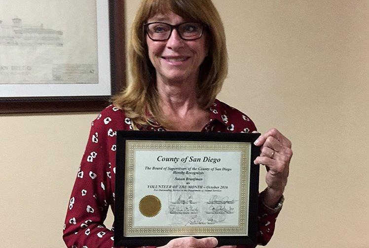 Volunteer of the Month Susan Branfman.