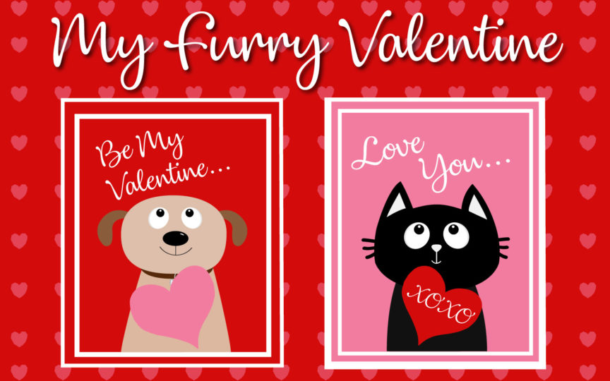 Valentine's Day cards with drawings of a cat and dog on them asking to be your Valentine.