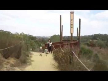 Virtual Hike: San Dieguito County Park