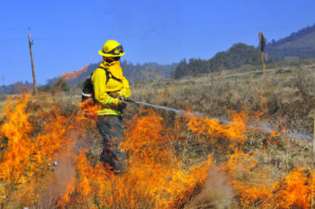 Firefighter putting out fire in a grassy field.